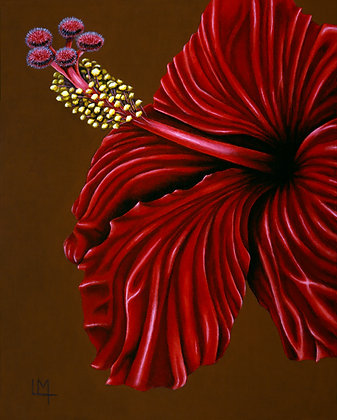 LMFA Flower Art, HIBISCUS, Giclee Print: LIMITED Edition, By Logan Madsen