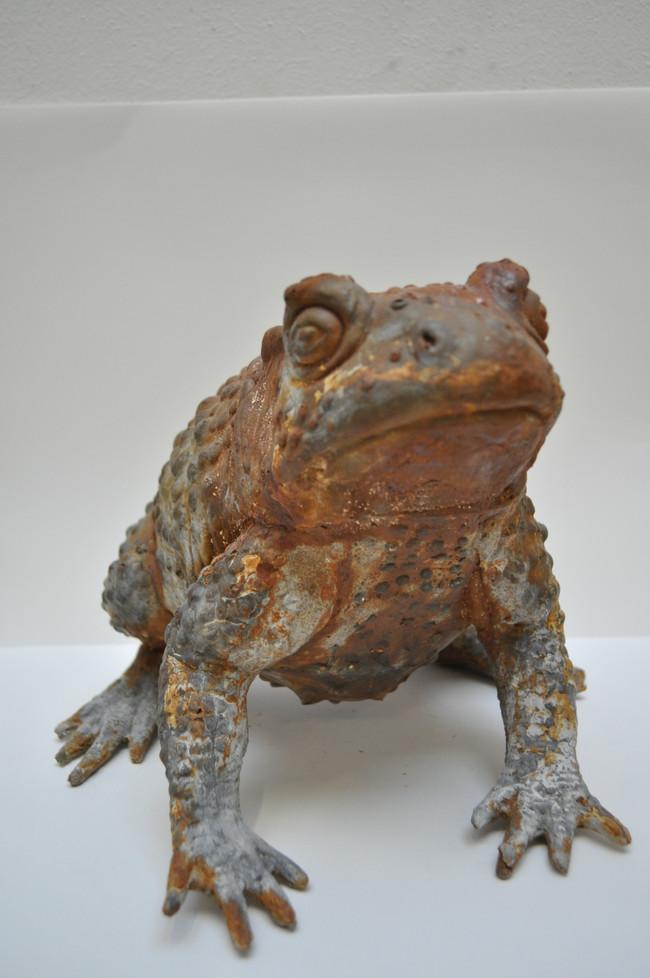 Plaster, Iron Powder (Toad)
