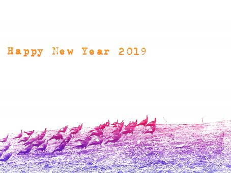New Year New Beginnings