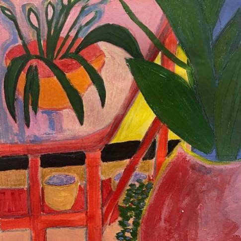 Studio Plants