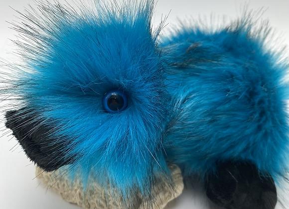Little Blue Duckie