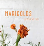 """Marigolds"" by Sanderling"
