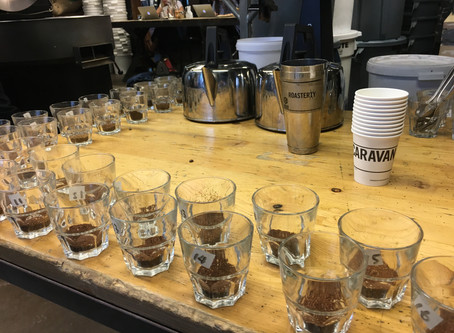 My Coffee Career Progression 4