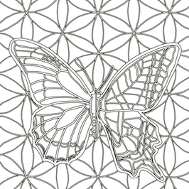 Butterfly Neon copy.png