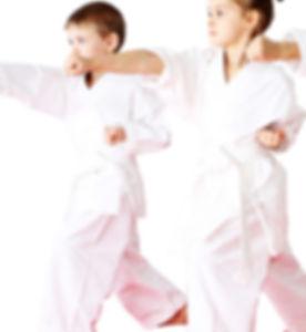 White Belt Kids.jpg