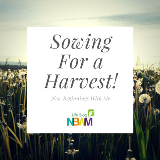 Sowing for a Harvest