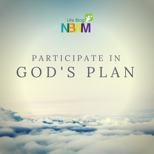 Participate in God's Plan