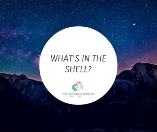 What's In the Shell?