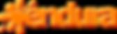 Endura Logo-.png