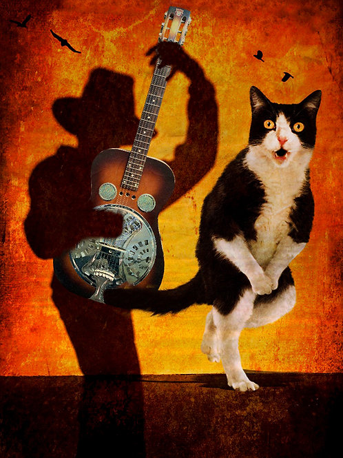 "Beverly Brock  ""Shadow Plays for the Cat"""