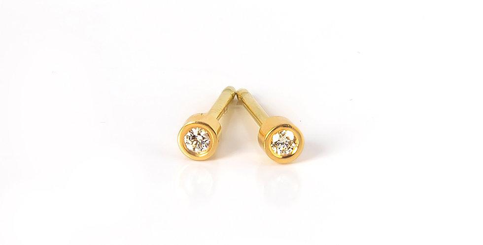 EDGE Studs Earrings