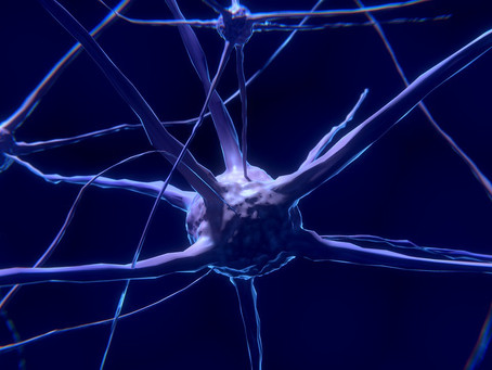 Sitting at the Intersection of Neuroscience and Mindfulness
