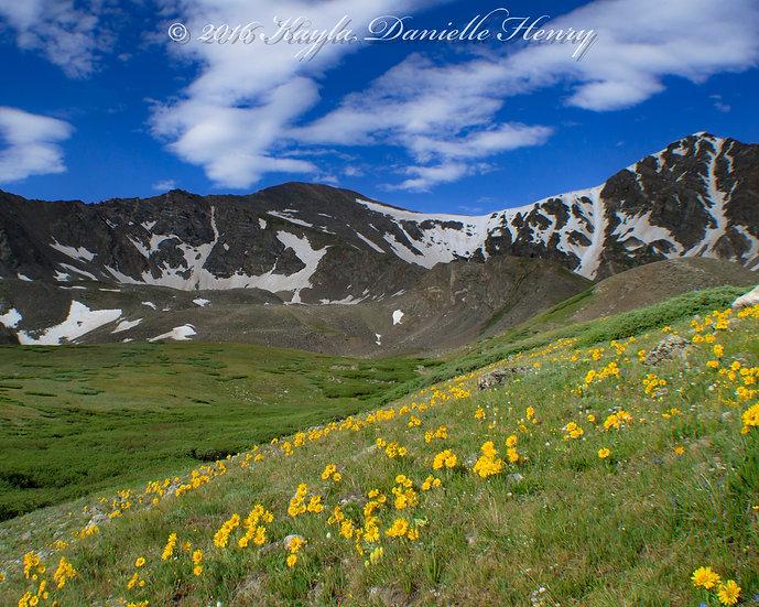 Grays and Torreys' Peaks
