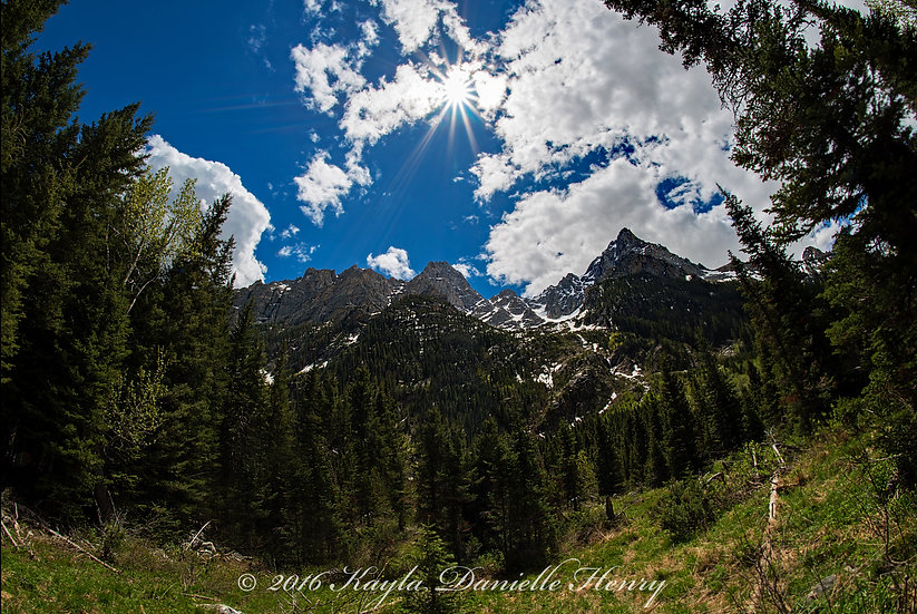 Tetons from Within