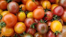 2021 Tomato Plant Start Pre-Order