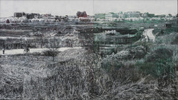 ミメーシス/行為の堆積/ Bush and road