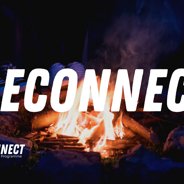 Reconnect Programme