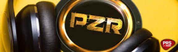 PZR.jpg