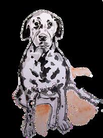dog cutout_edited.png