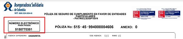 pago solidaria 3.png