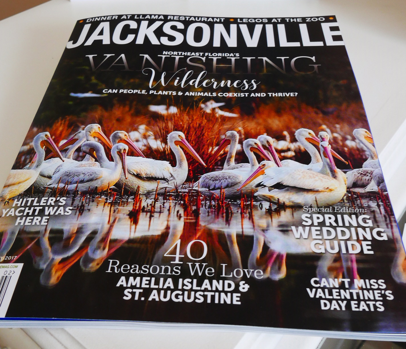 Jacksonville Magazine Cover