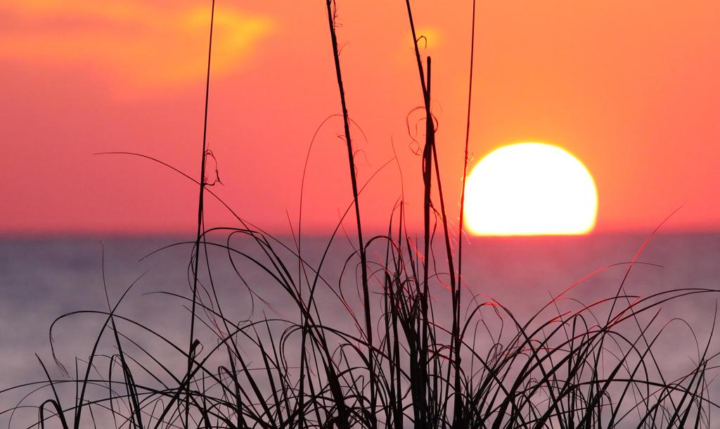 Guana Sunrise