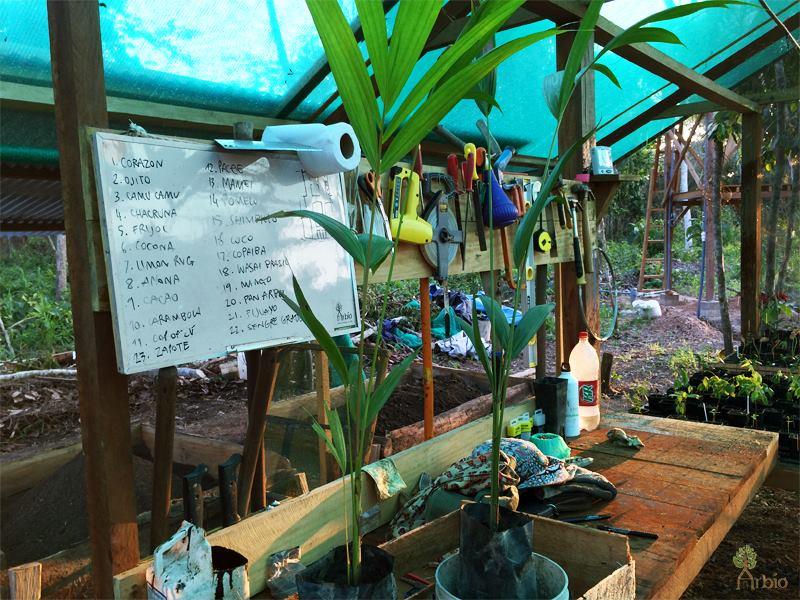 Analog Forestry Nursery