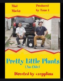 PRETTY LITTLE PLANTS (Music Video) – MAD MACKS