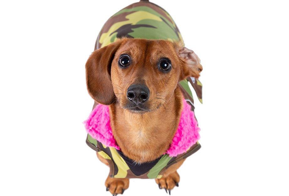 DRYROBE DOG camo/pink SMALL