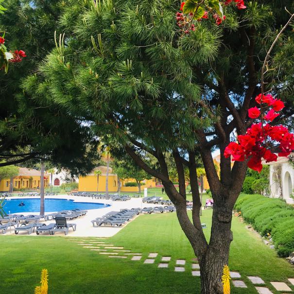 Gartenanlage des Hotels