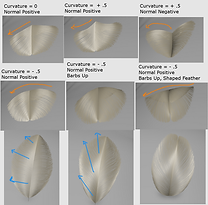 Feathers_Shapes_2.png
