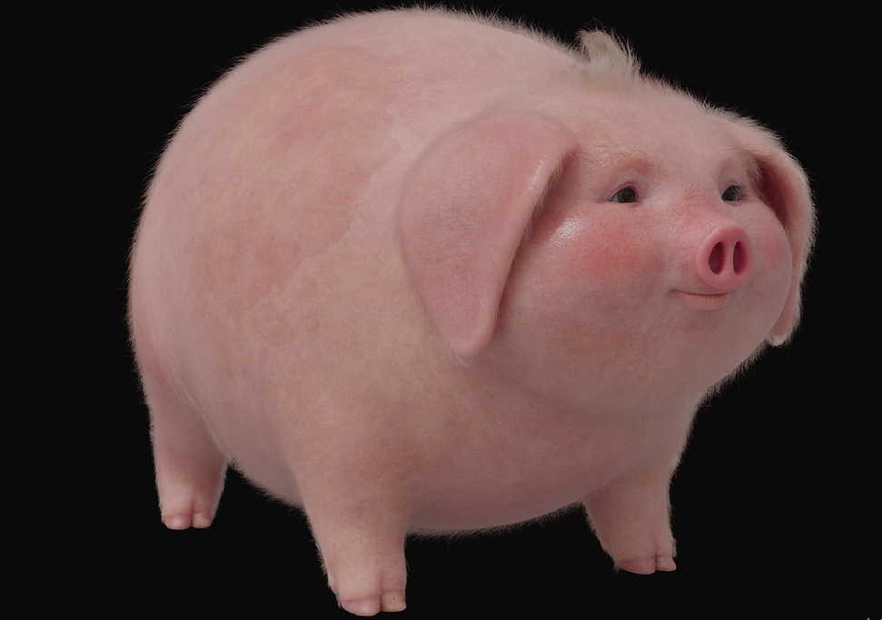 pig02.png.png