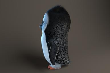 Yeti, Bird, Feathers, Fur, Maya, Hair, Realistic, V-ray, 3D
