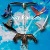 sky rockets front cover.jpg