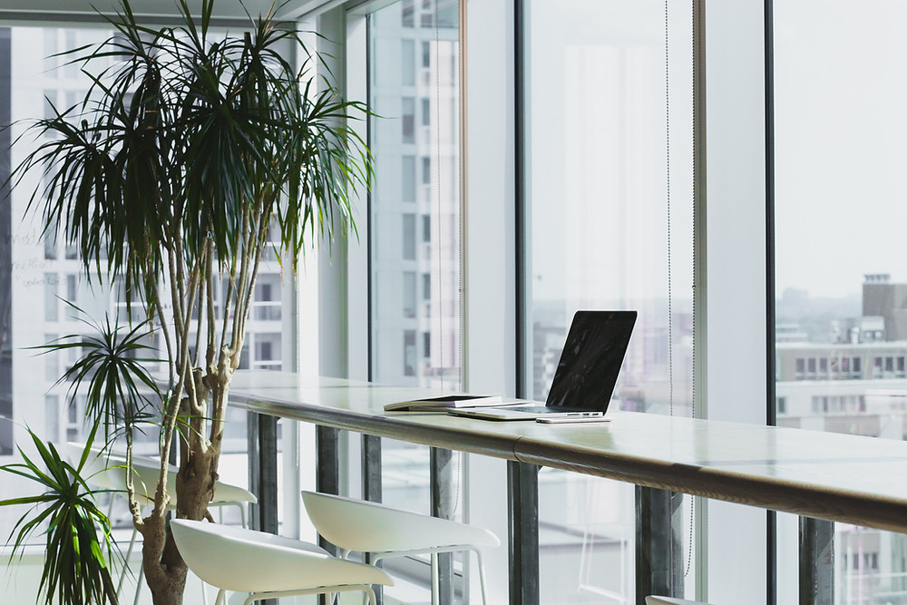 healthy office interiors may be an aspect of a company's sustainability plan