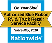 Nationwide Blue Ribbon Icon (1).png