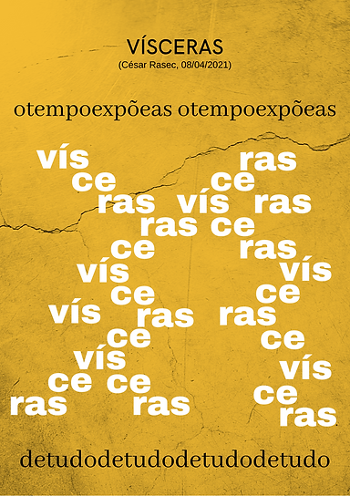 VÍSCERAS.png