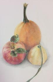 Autumn Organics colored pencil drawing