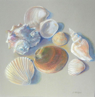 Beach Jewels colored pencil drawing
