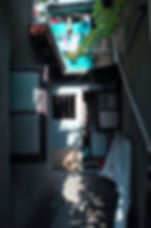 DSC_3378.JPG