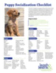 Puppy Training NYC, Puppy Socialization