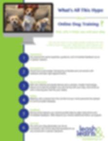 Online Dog Training.jpg