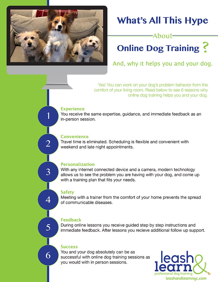 Online Dog Training.jpg