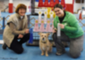 rally dog, positive reinforcement, first place, wcrl, proud, nyc dogs, nyc dog training, first trial, leash and learn
