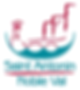 logo-sanv.png