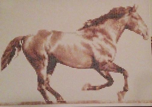 Cavalo 4 - Argenide Ghini