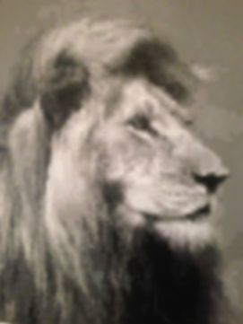 Pixel art lion paintng