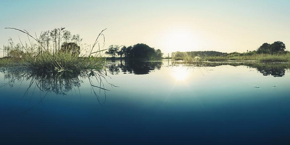 DIECKMANN & HANSEN pond fishery