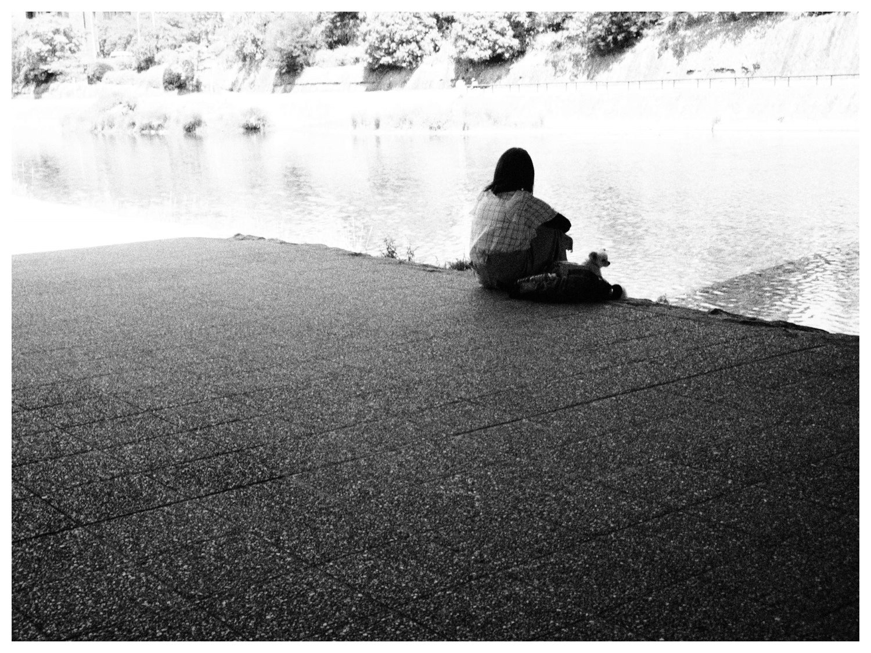 鴨川の昼下がり その2