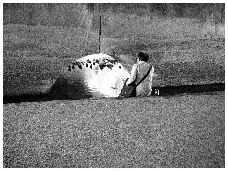鴨川の昼下がり その1